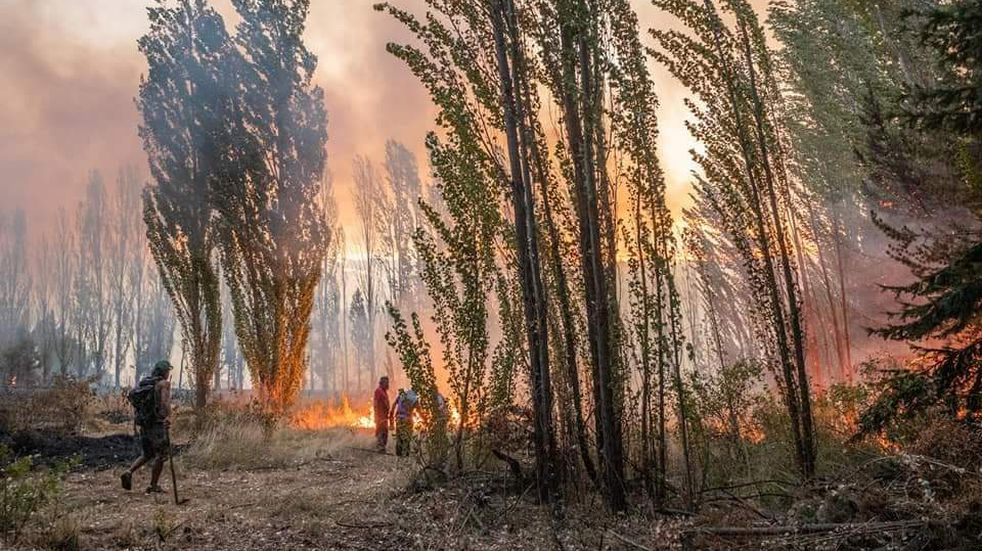 Chubut: hallaron un cuerpo en medio del incendio