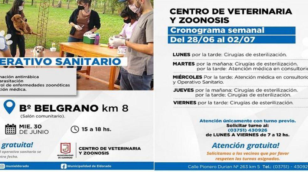 Operativo sanitario de zoonosis en Eldorado