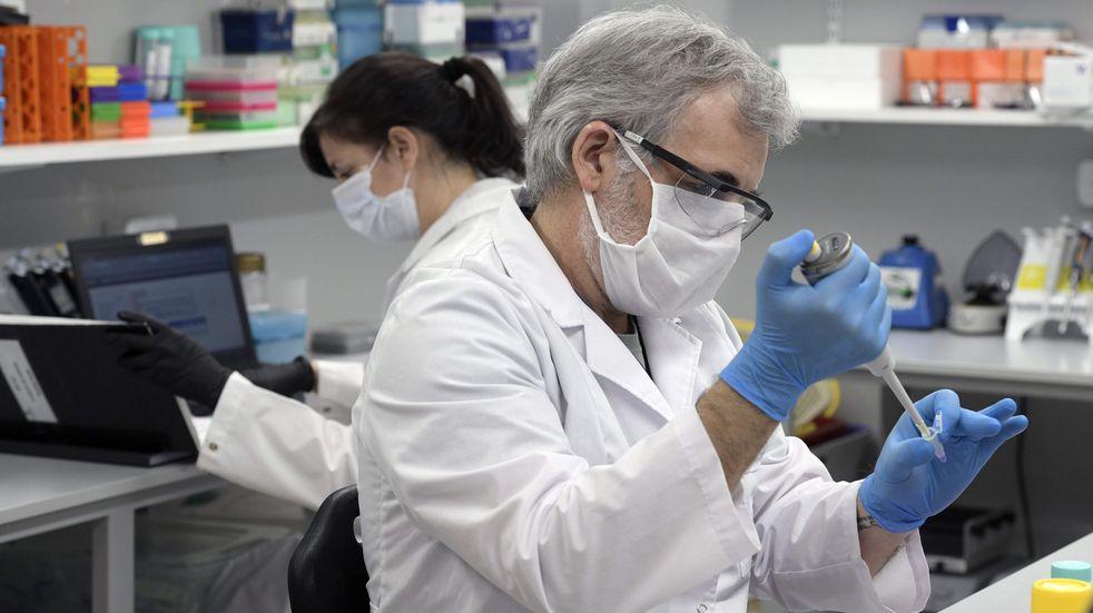 Qué es, cómo funciona y a quiénes beneficia el suero equino hiperinmune