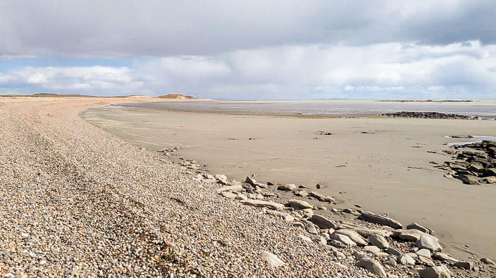 Río Grande: se establecieron tres sectores de playa con protección específica para aves migratorias