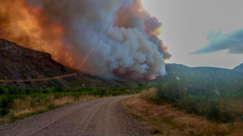 Diferentes ONG buscan enviar ayuda  a las provincias afectadas por los incendios