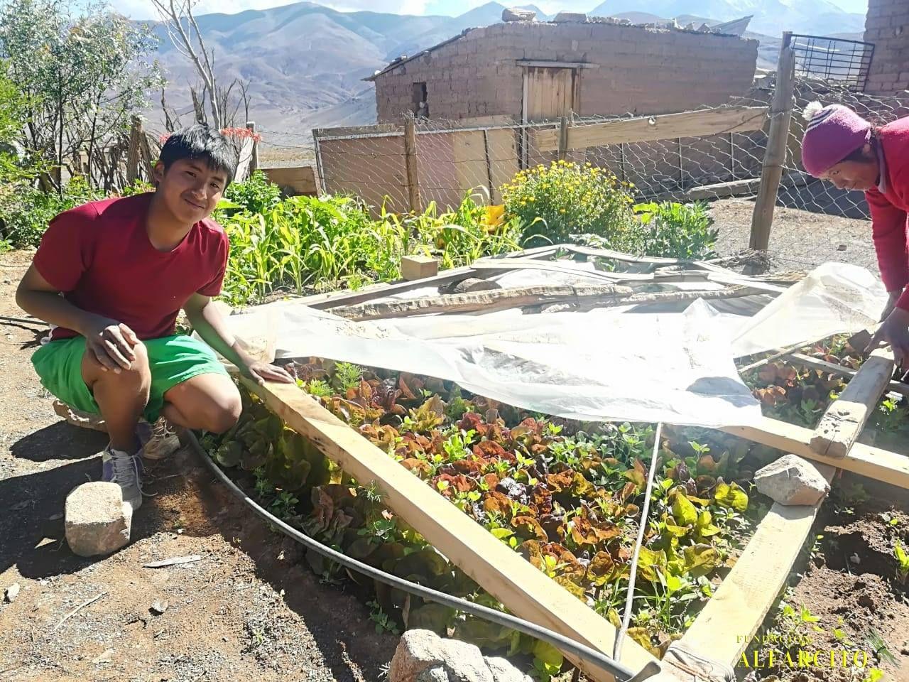 La Fundación Alfarcito instala riego por goteo a productores de la Puna