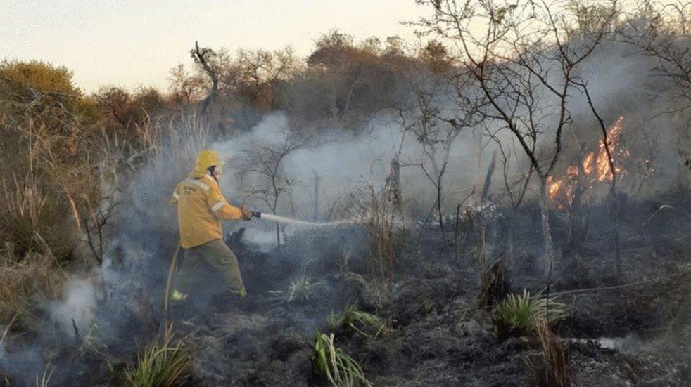 Nuevos incendios forestales en Feliciano