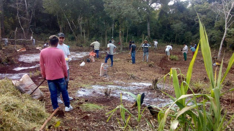 Puerto Libertad: integrantes de la Aldea Yryapú tuvieron capacitaciones en agrofloresta
