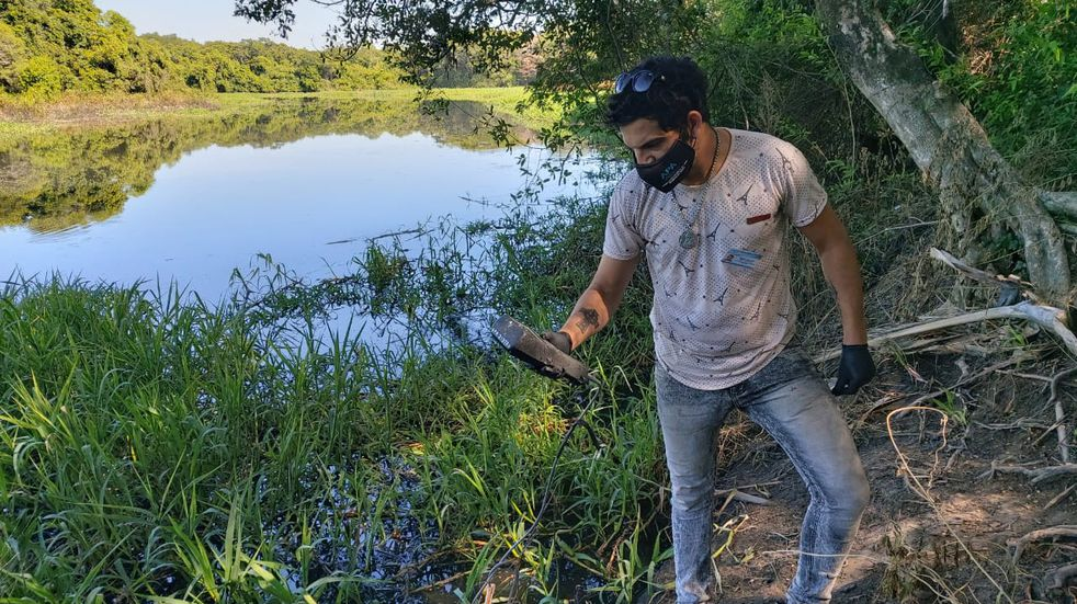 Detectan mal olor en el Río Negro por la descomposición de carrizales