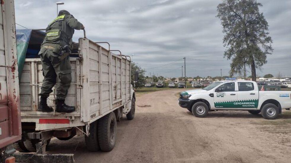El Soberbio: interceptaron un camión con 56 toneladas de soja ilegal