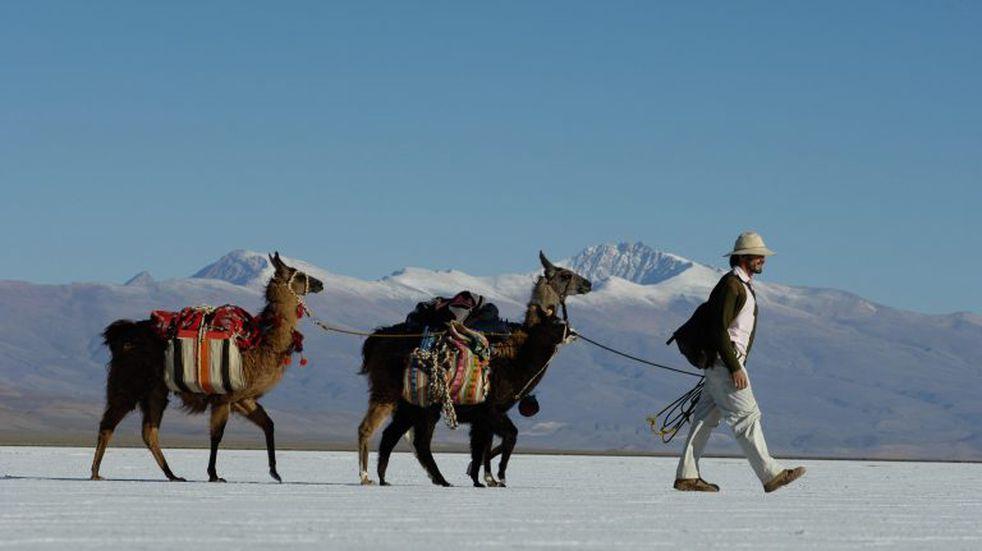 Jujuy, en el top 5 de destinos elegidos para el turismo de verano
