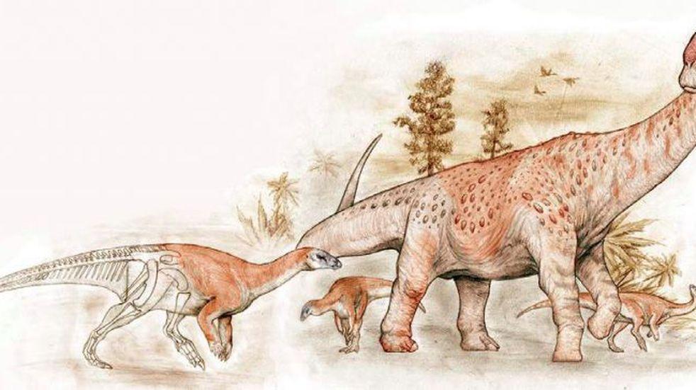 Descubren nuevas especies de dinosaurios en Santa Cruz