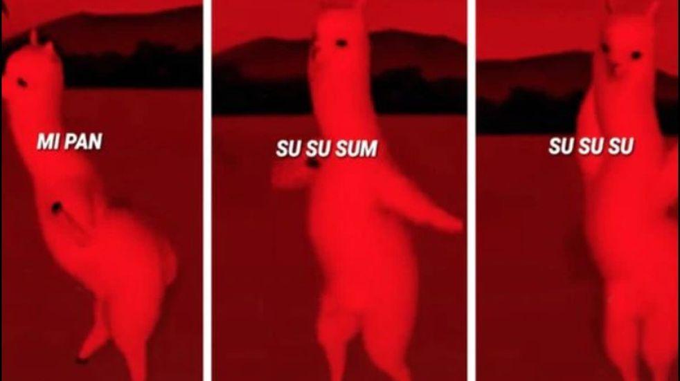 """Qué significa """"Mi pan su su sum"""", la canción que es furor en TikTok"""