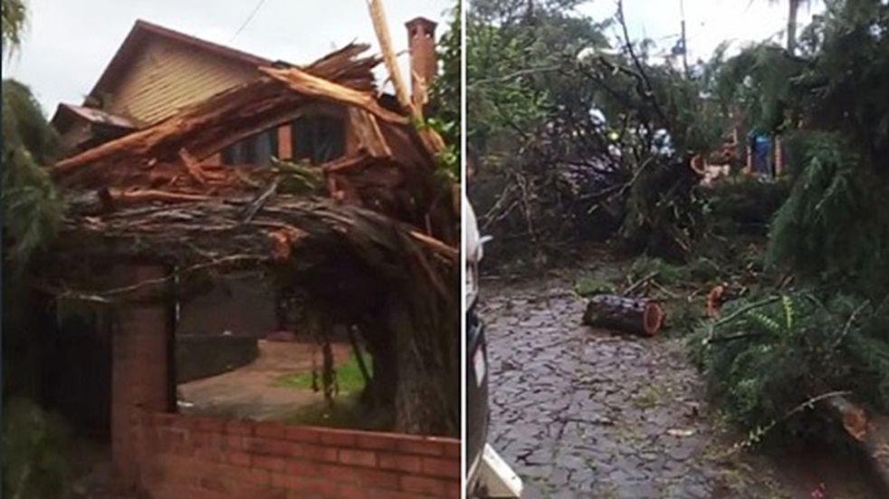 Bernardo de Irigoyen, San Pedro, Fracrán y San Vicente los municipios más afectados por el temporal