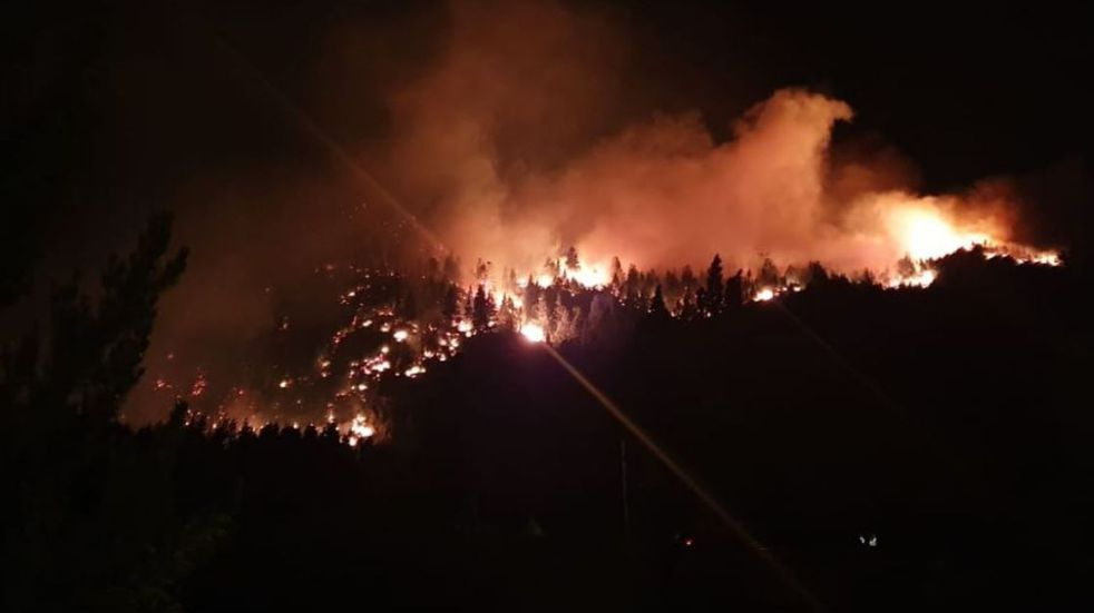 Las llamas consumieron unas 75 hectáreas de bosque nativo en Río Negro