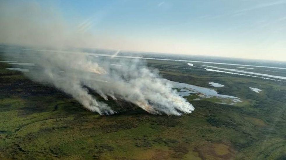 La Provincia incorpora a islas del Delta del Paraná a sus áreas protegidas
