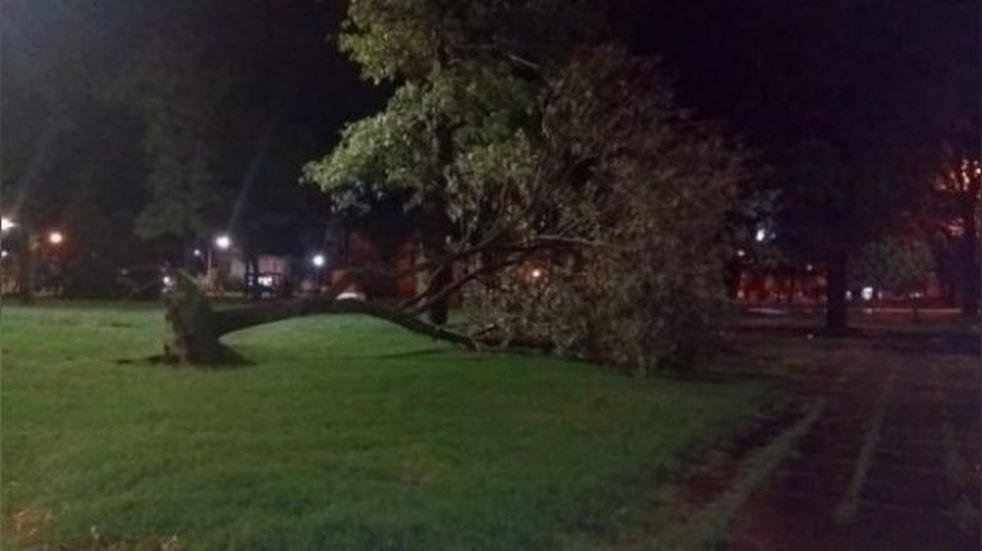 Devoto afectado por temporal