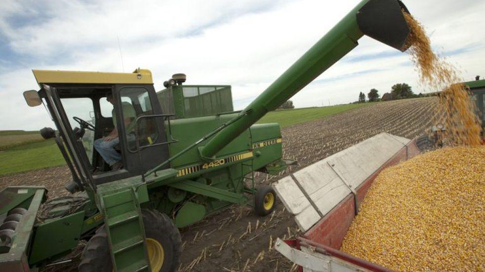 Productor entrerriano necesita más de mil kilos de trigo por hectárea para cubrir costos