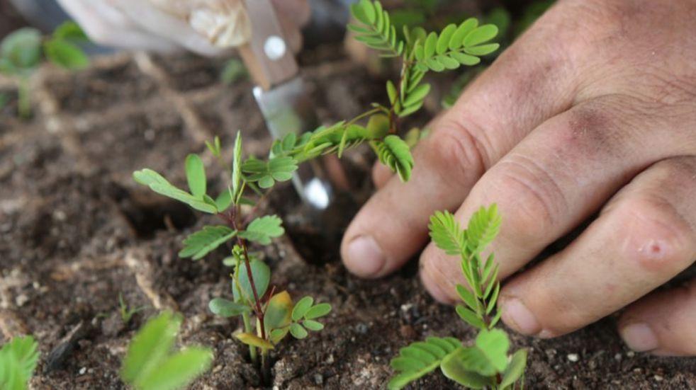 El Iscamen capacita sobre agroecología y buenas prácticas agrícolas