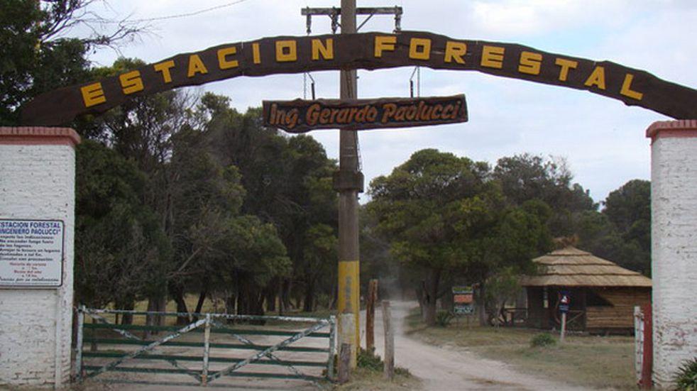 Jornada de forestación colectiva en el vivero de Claromecó (foto: el Periodista Tres Arroyos)