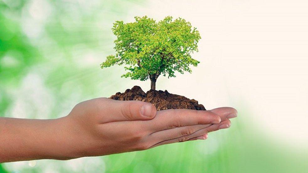 Se realizará una Jornada de Ambiente en Comodoro
