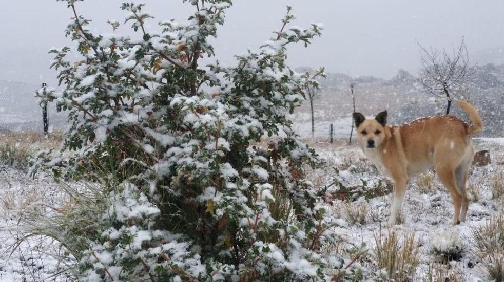 Bellas postales de las Altas Cumbres cubiertas de nieve