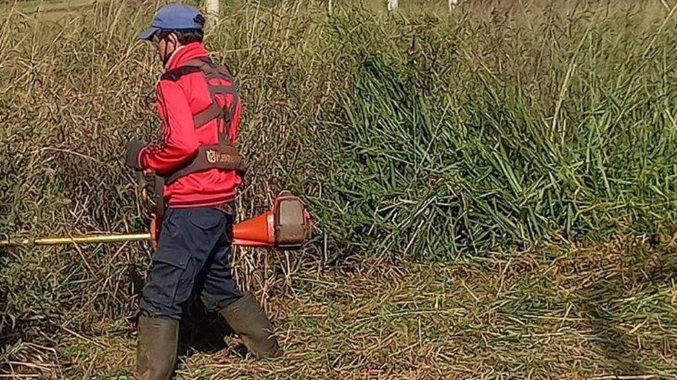 Itaembé Guazú: el IProDHa coordina desmalezamientos y limpieza