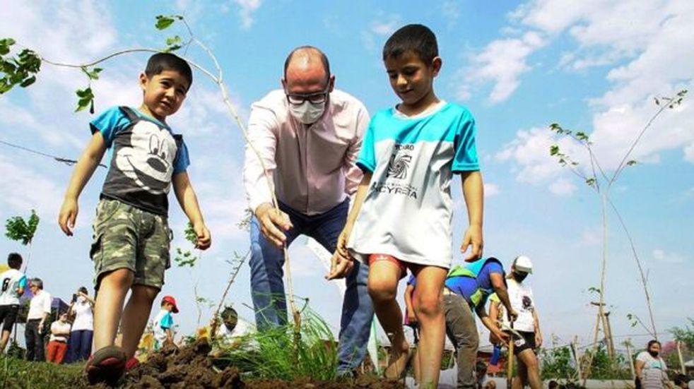 Jornada de arborización en Posadas y Garupá