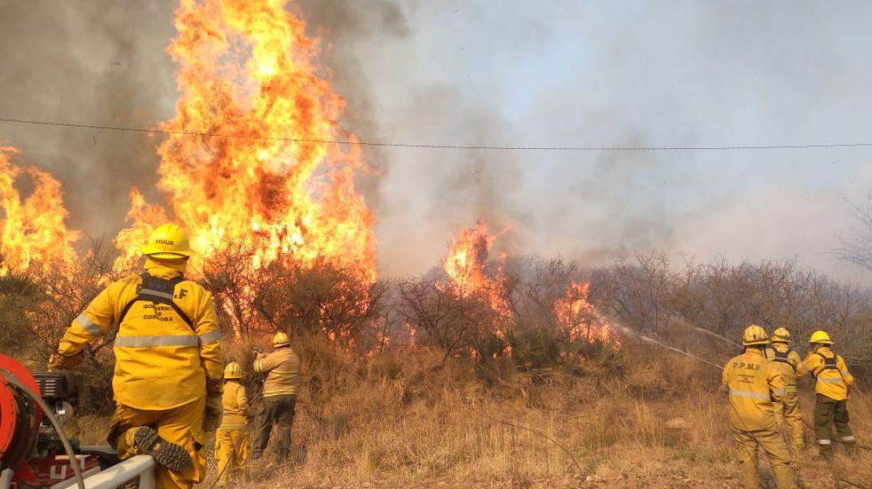 16 mil hectáreas afectadas en el quinto día activo.