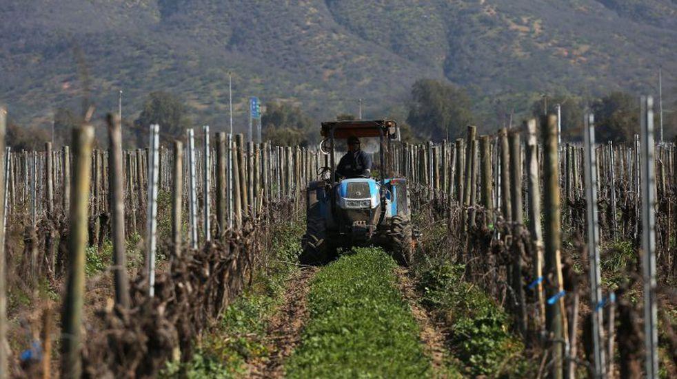 Más de cinco mil productores denunciaron daños por heladas esta temporada