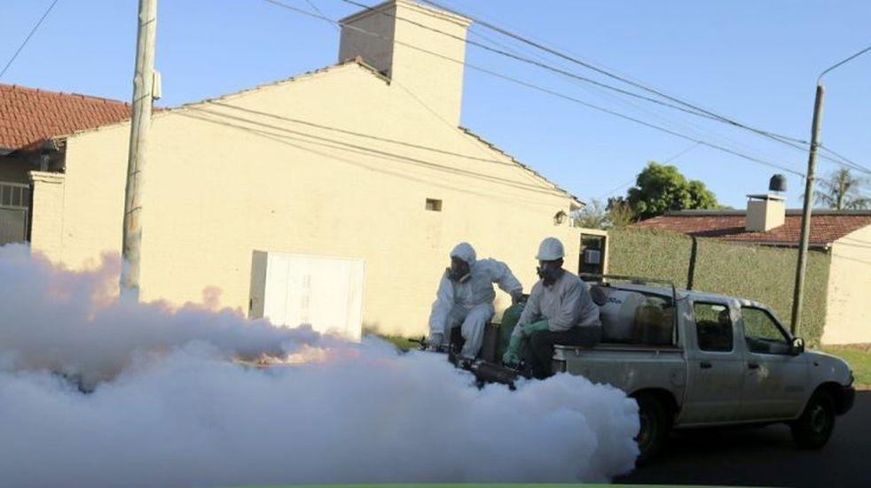 Son más de 9.000 los casos de dengue desde septiembre pasado en Misiones
