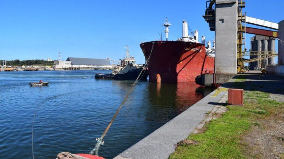 Puerto Quequén recupera la carga de semillas de girasol