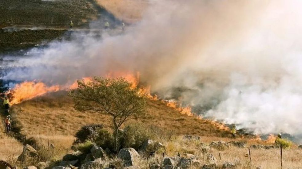 """Alerta Mundial: se incendia el """"segundo pulmón verde"""" del planeta"""