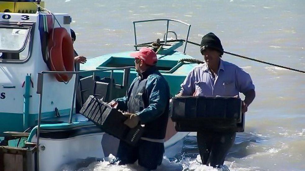 Pescadores artesanales de Mar del Plata y la zona fueron autorizados a salir a pescar en cuarentena