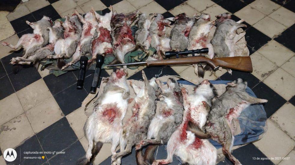 Cazadores furtivos fueron sorprendidos con 16 vizcachas muertas y los detienen tras una persecución
