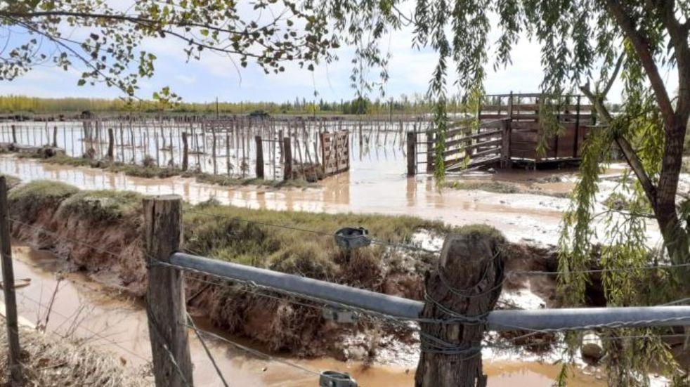 Reunión de funcionarios de Economía y ganaderos de San Rafael por las pérdidas que dejó la tormenta