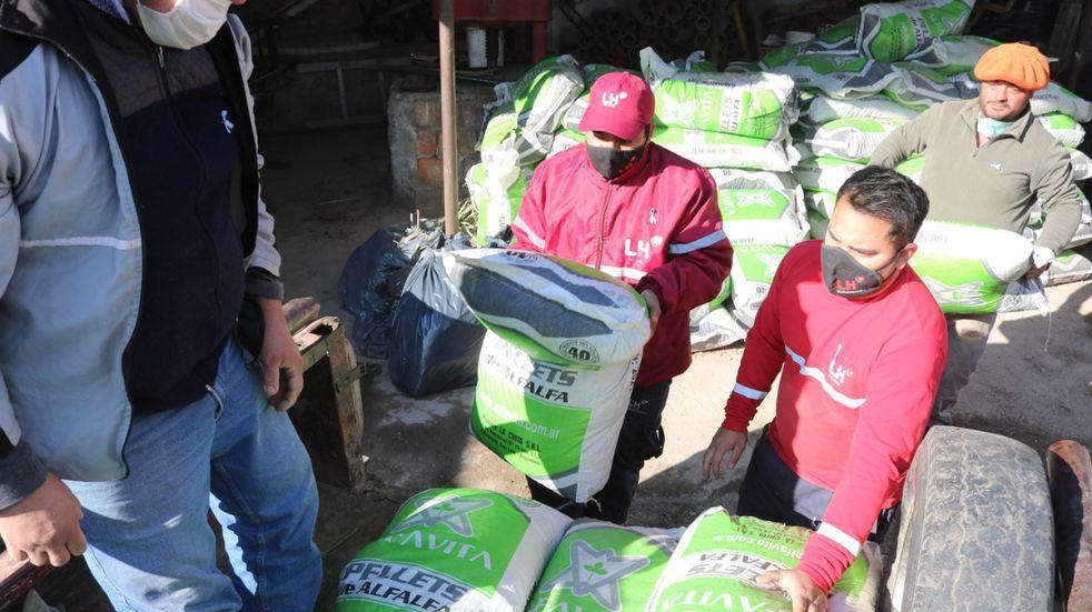 Emergencia agropecuaria: Ayudan a productores caprinos y ovinos de Las Heras