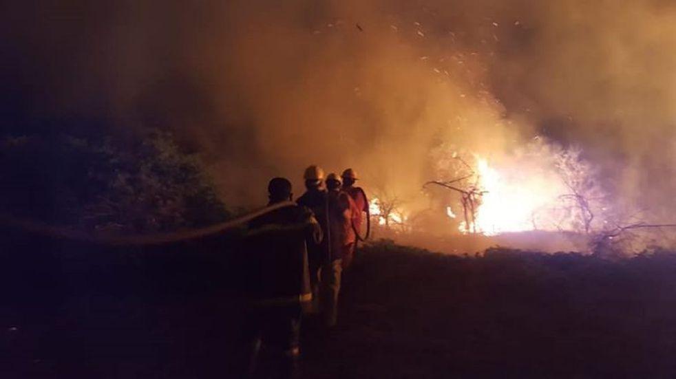 Los incendios en el norte salteño ponen el peligro al bosque nativo