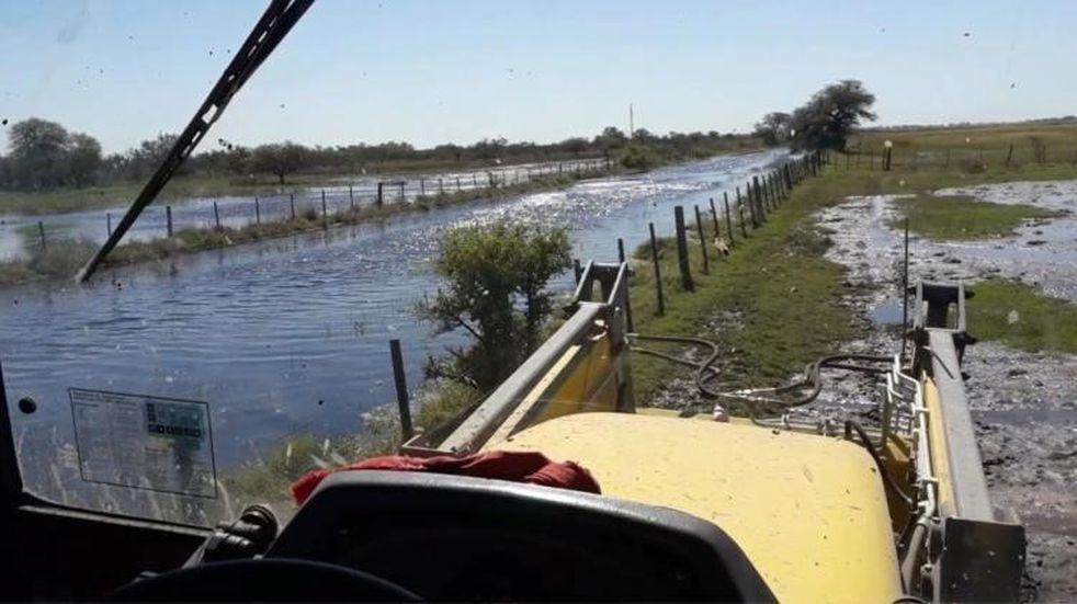 El Gobierno declara la emergencia agropecuaria en Córdoba y otras provincias