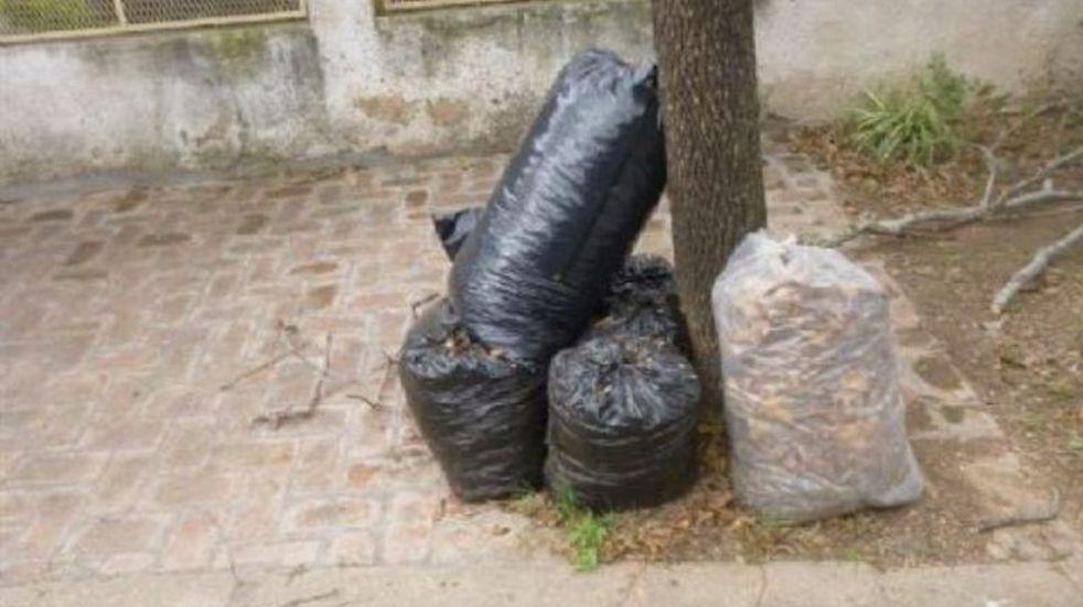 Mañana comienza la recolección de residuos voluminosos