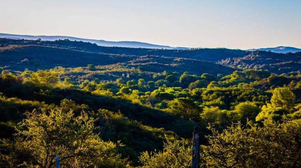 Medio ambiente: Intendentes de siete localidades de Punilla crearon el ODER