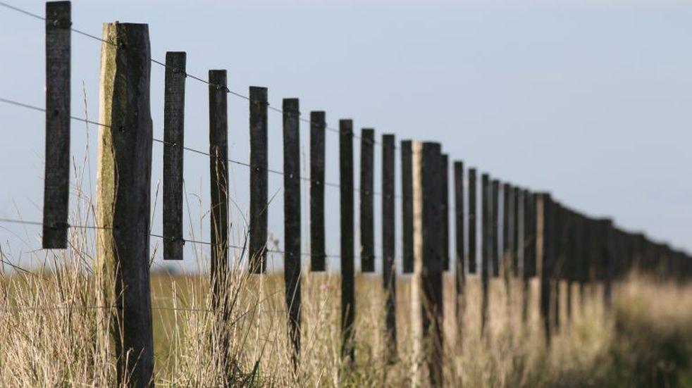 Impuesto de sellos en los contratos de arrendamientos rurales en la provincia de Buenos Aires