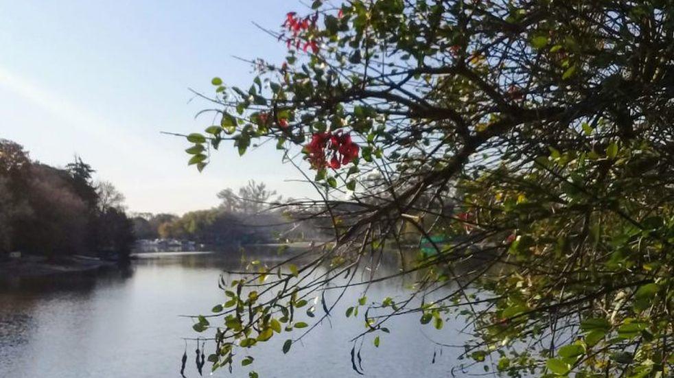 Cómo estará el clima el fin de semana en Gualeguaychú