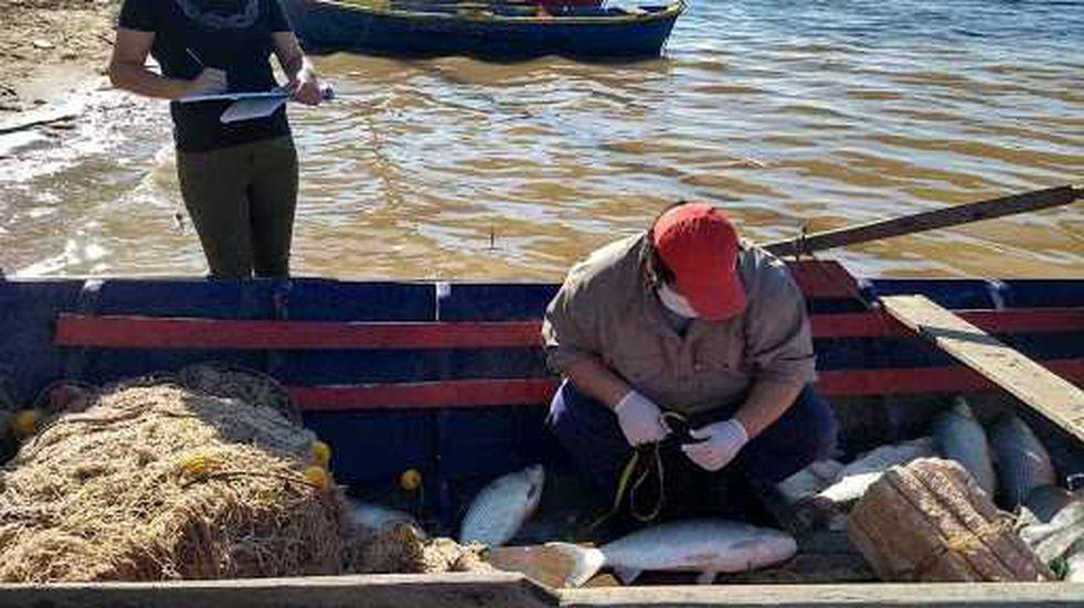 Chaco flexibilizó la pesca comercial