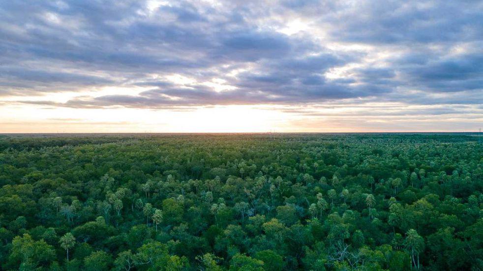 Chaco: el gobierno hará talleres para consensuar el Ordenamiento Territorial de Bosques Nativos