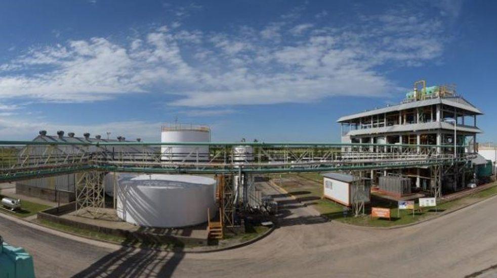 Empresas de biocombustible en alerta: hay 9 mil empleos en riesgo