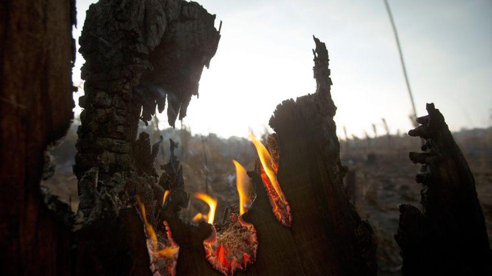 Gobierno de Santa Cruz dispuso brigadas para colaborar en el combate de los incendios en Brasil