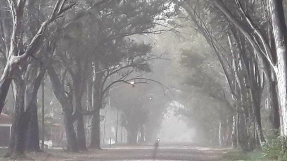 Se esperan vientos con ráfagas de intensidad en todo el sur mendocino.