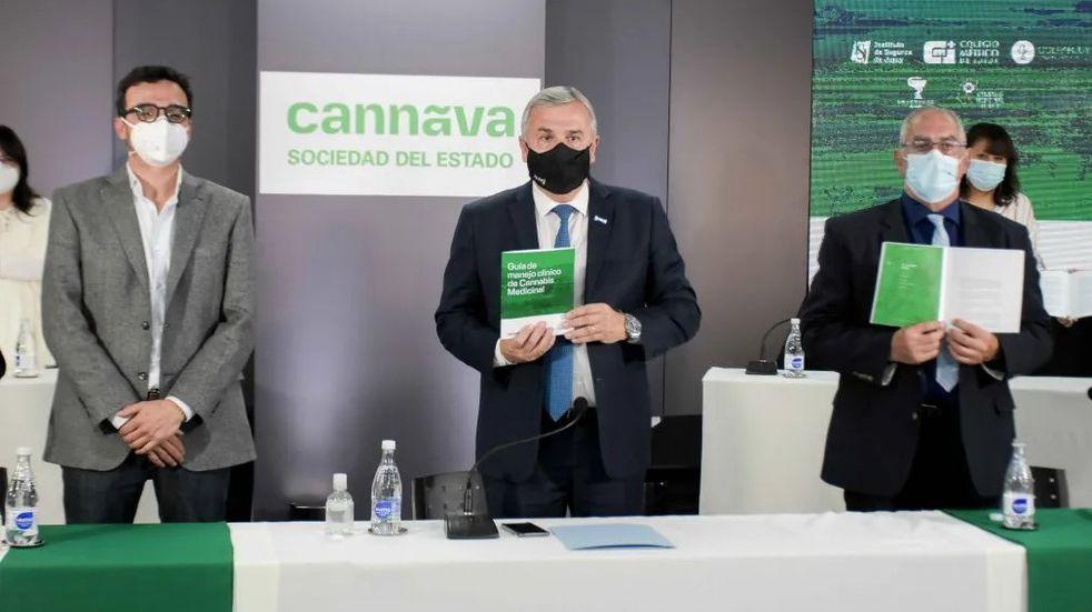 Jujuy ocupa el centro de la escena en materia de cannabis medicinal