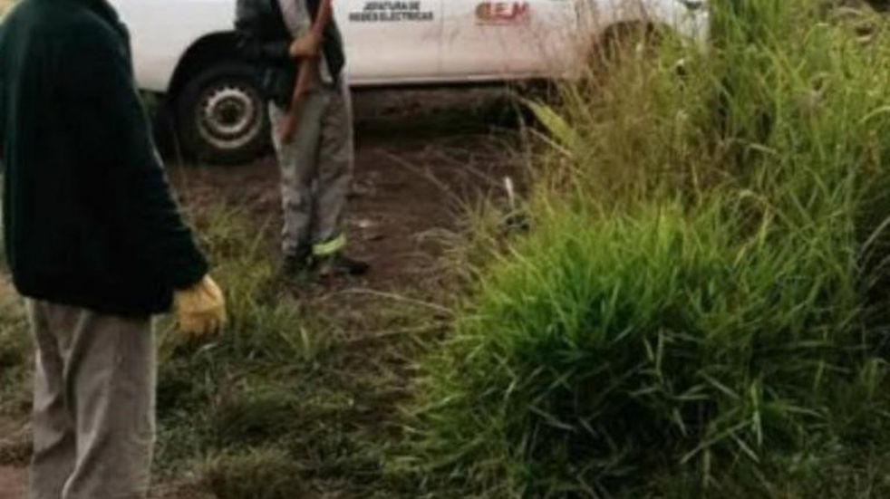 Instalaron un nuevo tramo de tendido eléctrico en la aldea Perutí de El Alcázar