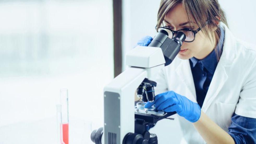 La Provincia lanzó la convocatoria para becas de movilidad para mujeres científicas