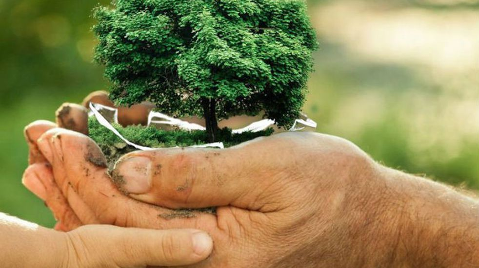 Cuidado del Medioambiente: charlas por el Centenario de la ciudad