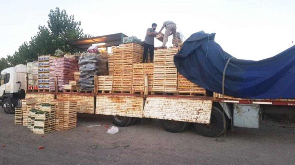Decomisaron 400 kilos de pimientos que intentaban ingresar a escondidas a San Rafael