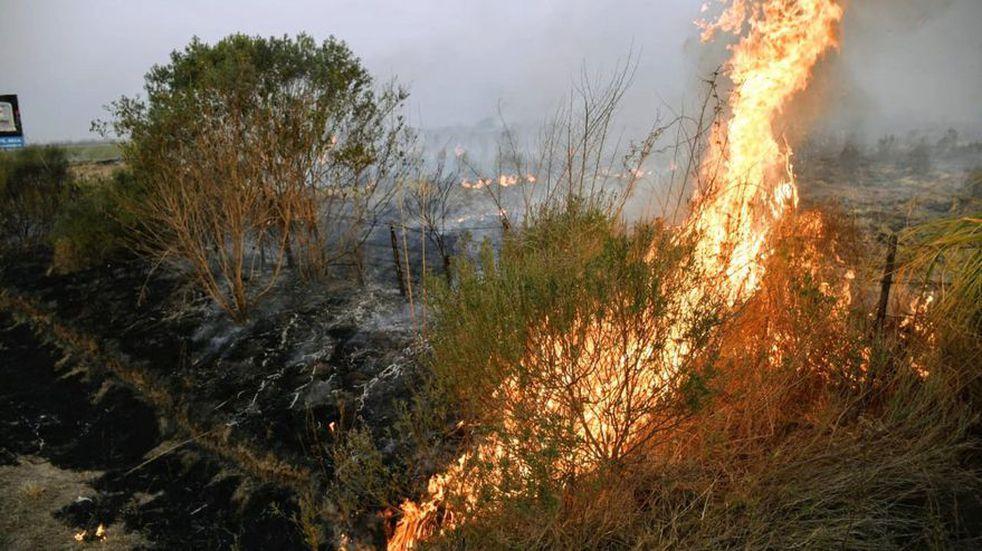 """Incendios en Santa Fe: """"Saldrá por parte de muchos ignorantes, que la culpa es del campo"""", dijeron desde la Sociedad Rural"""